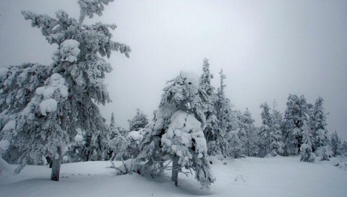 Brīvdienas būs saltas un sniegotas