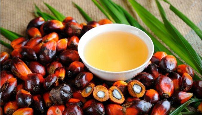 Neveselīgā palmu eļļa var būt pat siera un šokolādes sastāvā