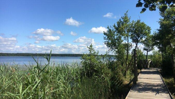 Foto: Mierpilna pastaiga pa Būšnieku ezera dabas taku