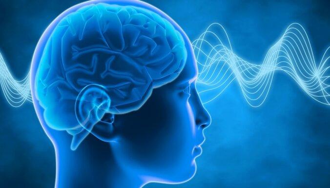 Koncentrēšanās ar spēles elementu – krustvārdu mīklu un sudoku ietekme uz smadzenēm