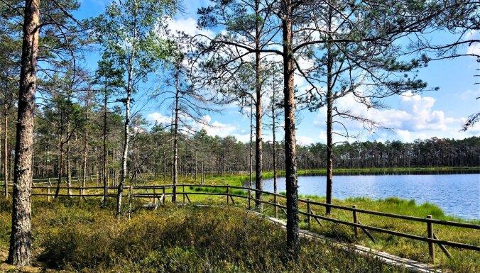 Из-за Covid-19 закрылись несколько природных троп и смотровых вышек по всей Латвии