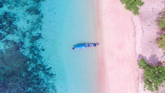 Pludmale Komodo salā, kas rotājas rozā tonī un kur var sastapt pasaulē lielāko ķirzaku