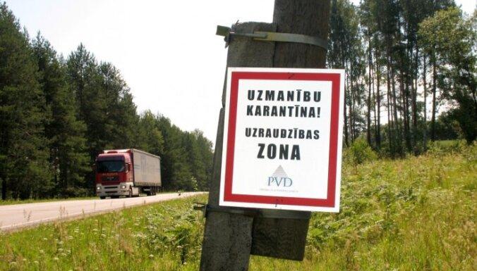 Африканская чума свиней охватила уже половину Латвии
