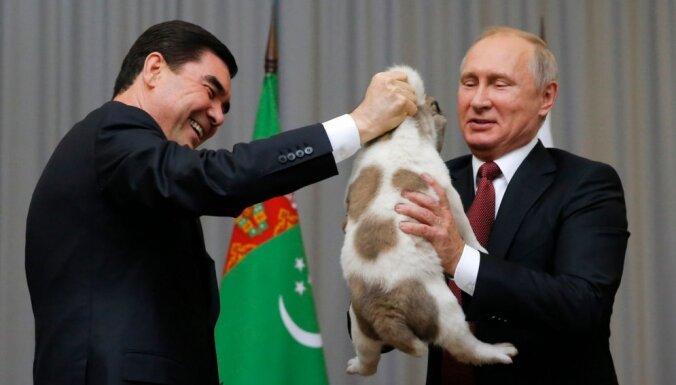 Foto: Putins dāvanā no turkmēņu vadoņa saņem kucēnu Verniju