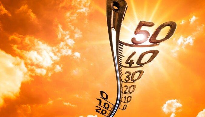 Как спастись от жары без кондиционера: 4 полезных совета, которые облегчат вам жизнь