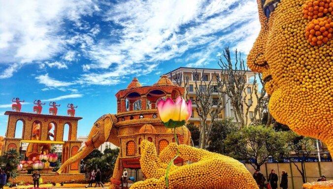Festivāls Francijā, kura laikā veido objektus no citrusaugļiem