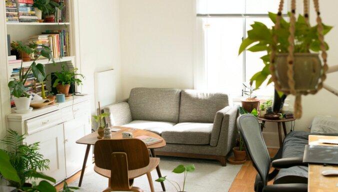Как в этом году изменился рынок квартир Риги?