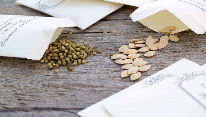 Ужесточается порядок ввоза в ЕС продуктов и семян