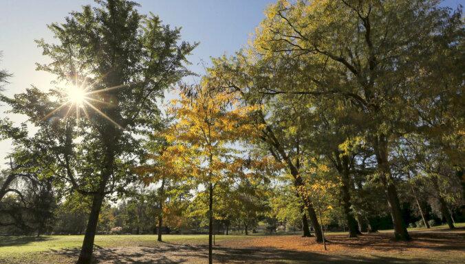 Iedzīvotāji var balsot par 15 Rīgas apkaimju attīstības projektiem