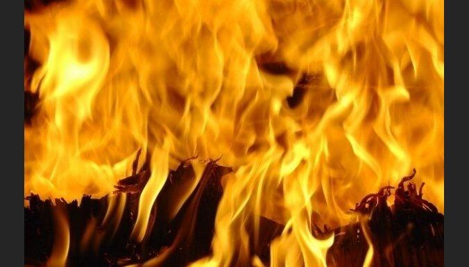 60 пожарных вышек останутся без присмотра