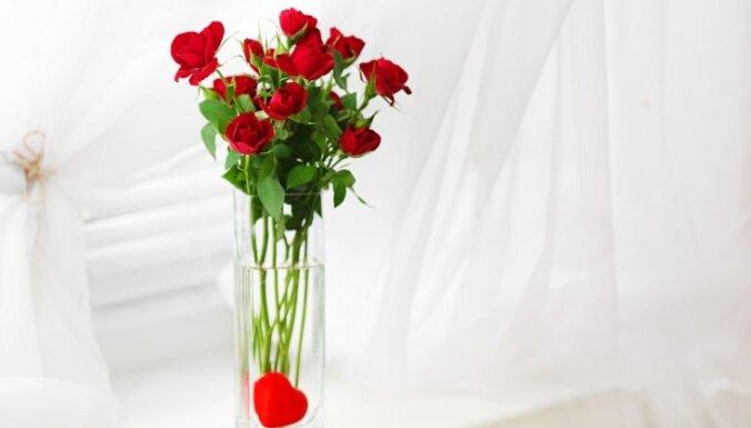 Как выбрать лучшие цветы и надолго сохранить их свежими?