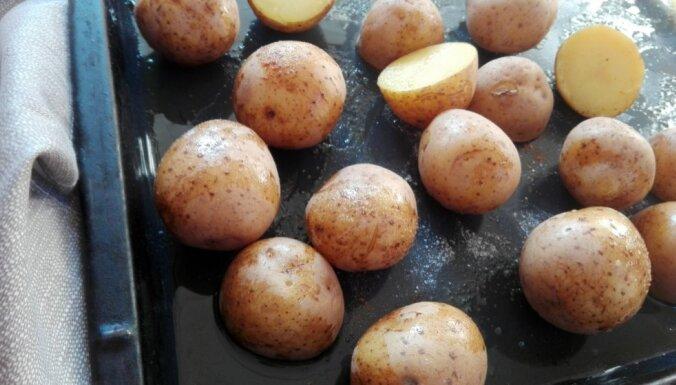 Kraukšķīgie medus kartupelīši ar divām mērcēm