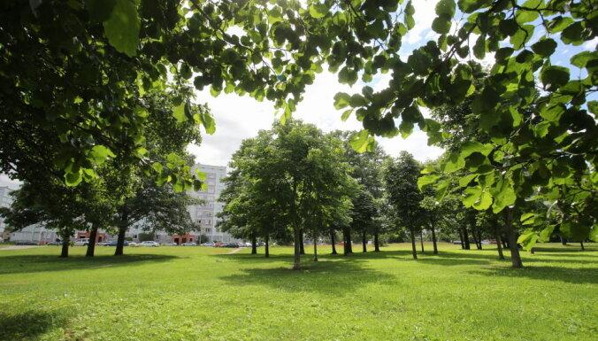 Рижская дума решила благоустроить парк Эбельмуйжи — там проложат дорожки и сделают освещение
