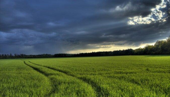 Синоптики: в пятницу ожидаются дожди с грозами