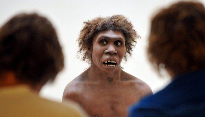 Неандертальцы и Homo sapiens разделились гораздо раньше, чем предполагалось