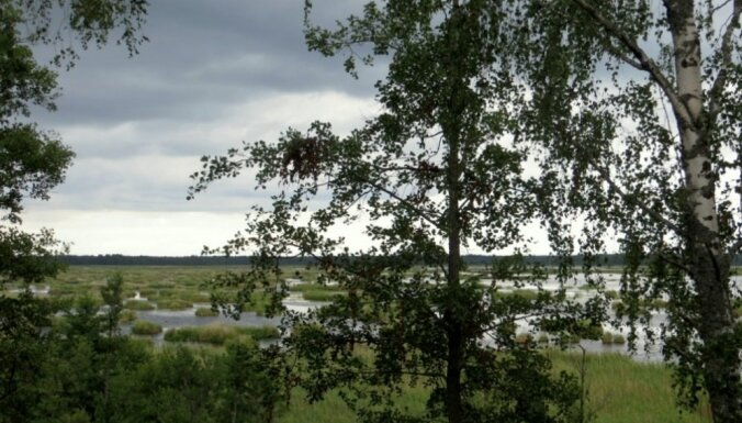 Sešas skaistas dabas takas Tukuma pusē, kur noķert rudens krāšņumu