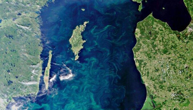 Baltijas jūrā neparasti agri sākušas ziedēt zilaļģes