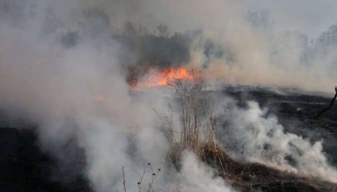 Югла: школьники попытались зажечь лес возле школы, пожар тушила полиция
