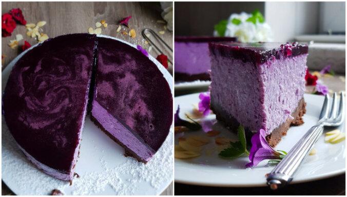 Neceptā biezpiena kūka ar mellenēm un šokolādes cepumu pamatni