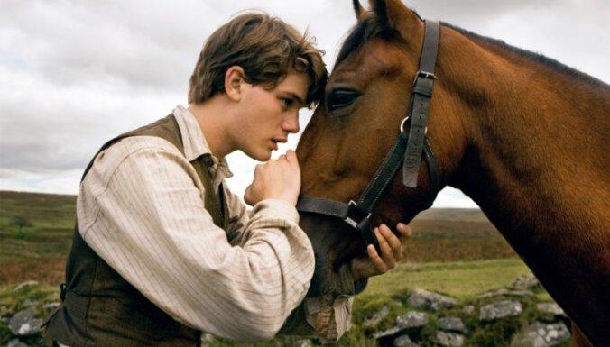 Kara zirgs