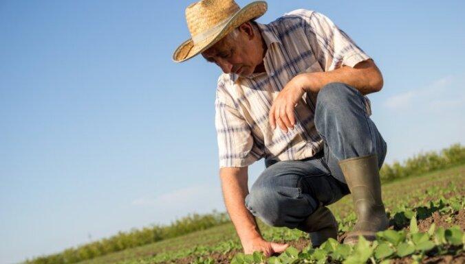 LAD: Lauksaimnieki platību maksājumiem piesakās vidēji aktīvi