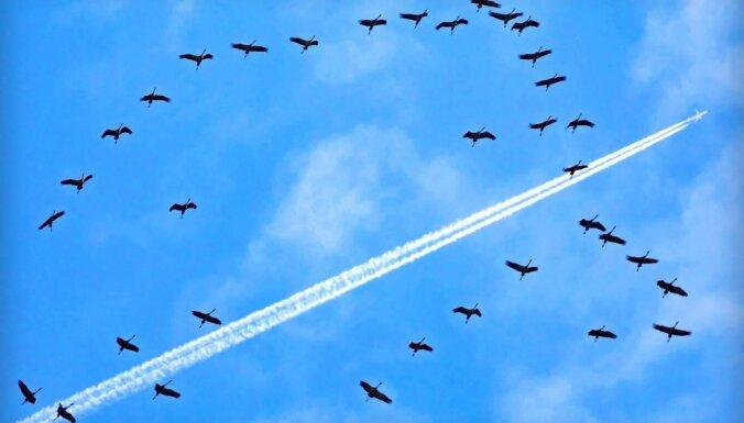 Latvijas tuvumā atkal manīta Krievijas armijas lidmašīna