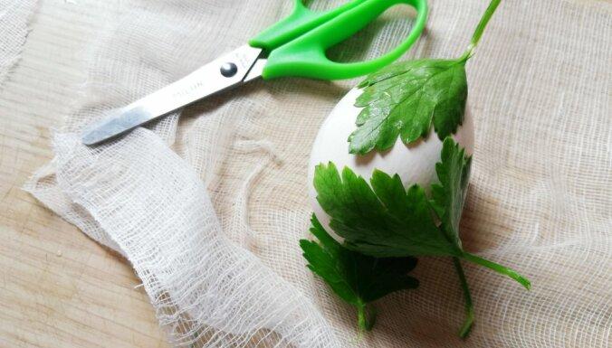 Ar bārdas putām, 'zeļonku' un salvetēm: 'Tasty' testē populārus olu krāsošanas veidus