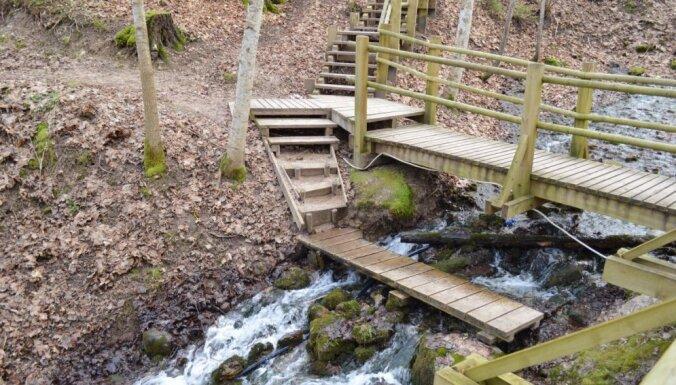Бьют ключом: Пять живописных мест в Латвии, где есть родники