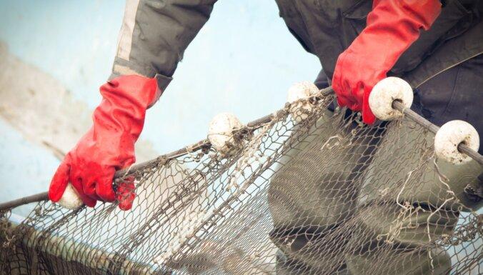 Inovācijām zivsaimniecībā būs pieejams atbalsts 3,79 miljonu eiro apmērā