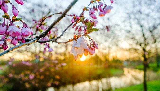 ФОТО. Парк Победы в лучах восходящего солнца