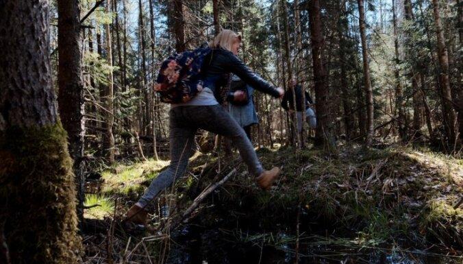 Столпотворение в лесу. Гид по безопасному отдыху на природе во время пандемии