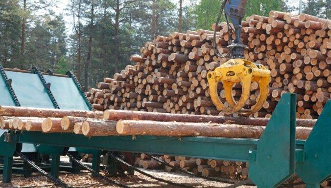 Dagnis Dubrovskis: Par latviešiem, mežiem un mantru skaitīšanu