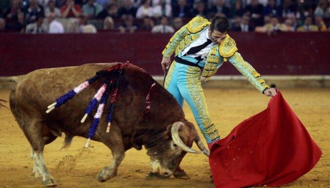 Spānijas salas vēršu cīņās aizliedz asinsizliešanu un alkohola lietošanu