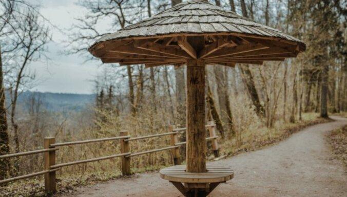 Meklējot koka sēnītes: ainavisks pārgājiena maršruts Siguldā