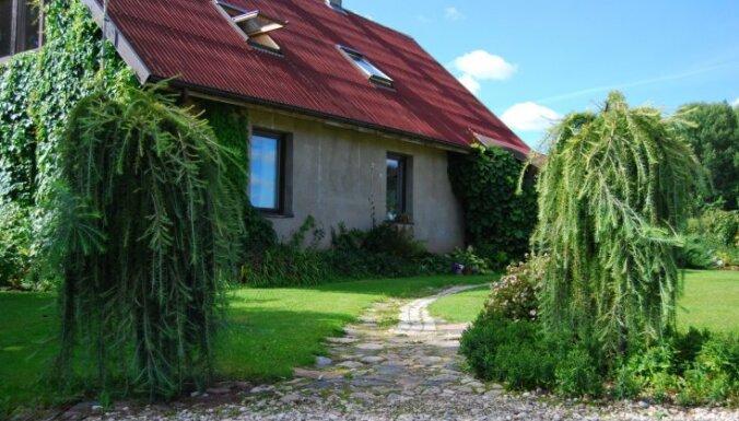 Ciemos: puķkopes Gunas Rukšānes mežonīgais dārzs, veidots pēc hipiju postulātiem