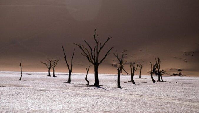 Ainava kā uz Mēness - pasaules augstākās tuksnesīgās kāpas Namībijā