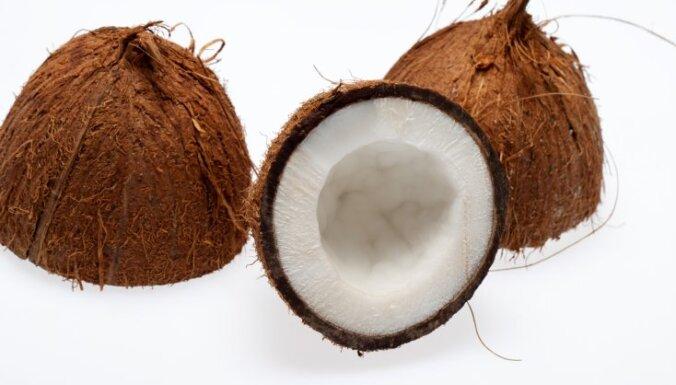 С российско-латвийской границы завернули 25 тонн кокосов из Республики Кот-д'Ивуар