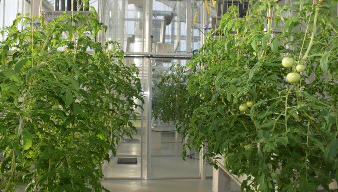 Jelgavā atklās ar moderniem 'gadžetiem' aprīkotas biotehnoloģiju laboratorijas
