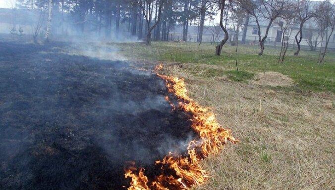 Пожилого мужчину задержали за поджог прошлогодней травы