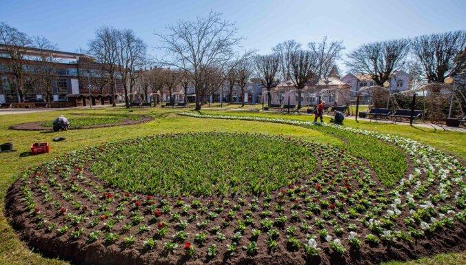 Jūrmalas apstādījumi šogad rotāsies Latvijas novadu tautastērpu krāsās