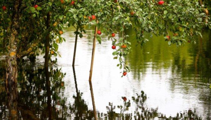 Brīdina par stiprām lietusgāzēm; iespējama zemāko vietu applūšana