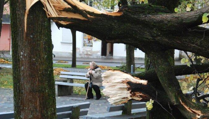 Latvija palīdzēs Lietuvai atjaunot spēcīgajā vētrā sagandēto elektroapgādi