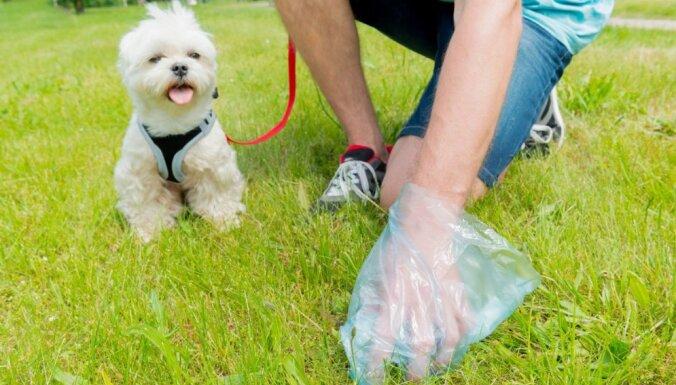 Убирайте за собакой: 29 марта полиция проведет по всей Риге акцию