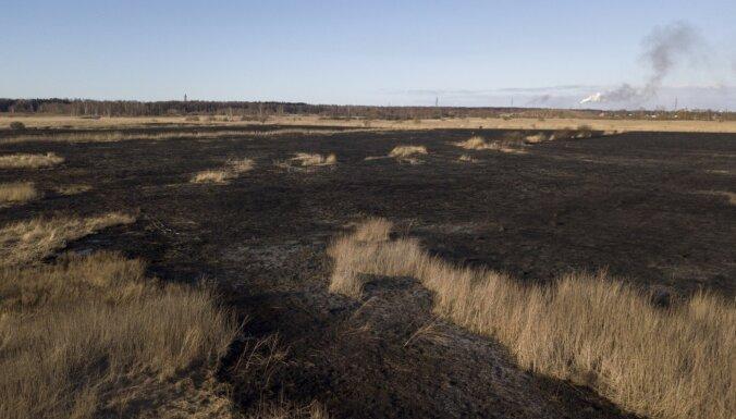 Штрафы, налоги, слежение со спутника: борьба с поджигателями старника привела к снижению количества пожаров
