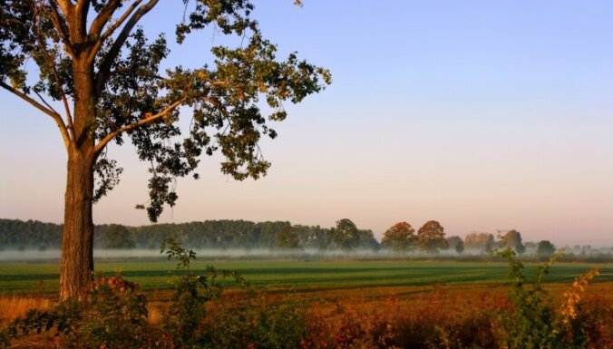 Pēdējo reizi šogad gaisa temperatūra Latvijā paaugstinājusies līdz +18 grādiem