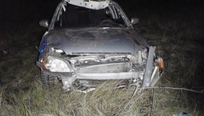 Honda сбила лося, выбежавшего на трассу Рига-Лиепая: трое пострадавших