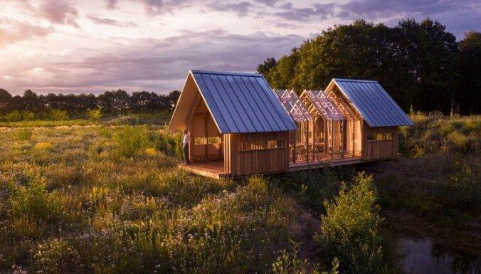 ФОТО. Слиться с природой: современный деревянный дом с прозрачными стенами и крышей