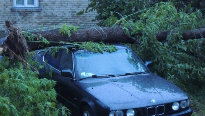 Буря в Даугавпилсе повредила здания и повалила деревья