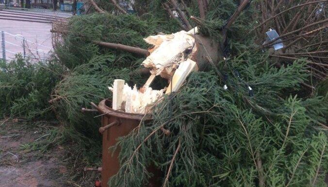 ФОТО: В Вентспилсе буря сломала главную городскую елку, сообщают о разрушениях по всей Латвии