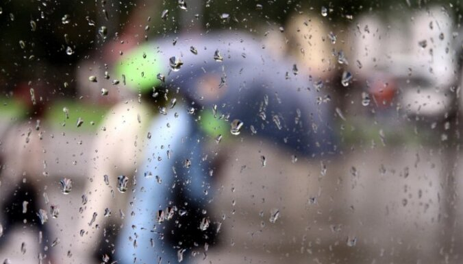 Синоптики: в пятницу будет дождливо и похолодает до +8 градусов